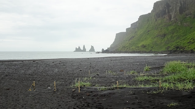 Next to VIK is the black beach