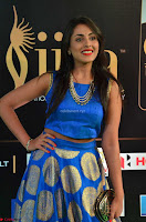 Madhu Shalini Looks Super Cute Slim trim Blue Choli Ghagra IIFA Utsavam Awards 006.JPG