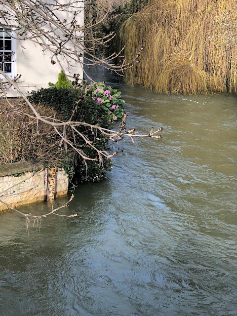 Chez Maximka, floods in Oxfordshire