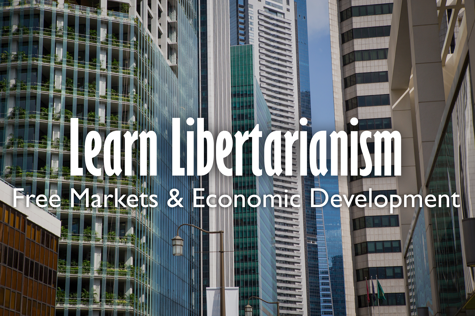Libertarian Society Singapore | Free Markets & Economic Development