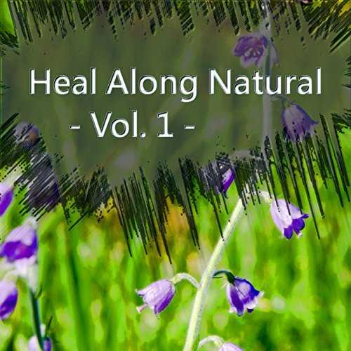 [Album] xilia – Heal Along Natural -Vol.1- (2015.11.14/MP3/RAR)