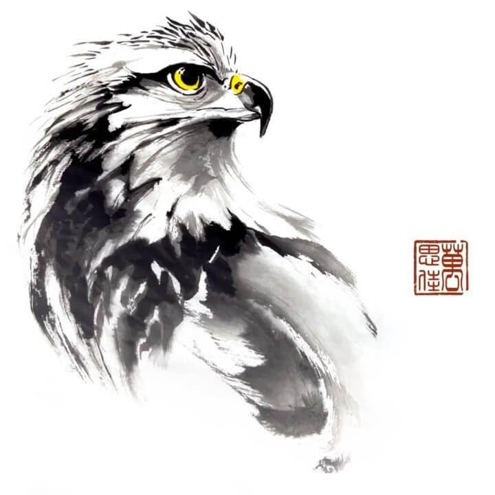 02-Eagle-Dirk-Swan-www-designstack-co