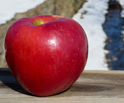 A large red apple