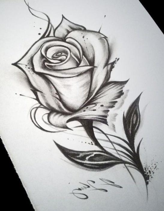Sketsa Gambar Bunga Dan Cara Membuat Sketsa Bagi Pemula Fourwedhe