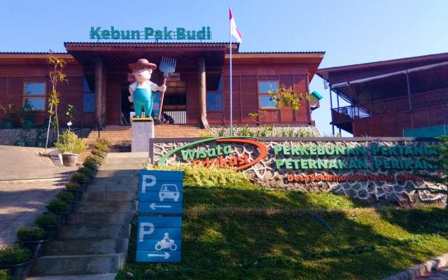 Wisata edukasi kebun Pak Budi Pasuruan, Eksotis dan Menyenangkan