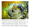 What's behind the Dogecoin rally and price rise