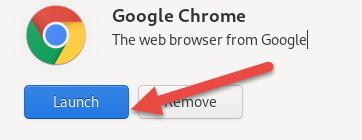 Launch Google Chrome