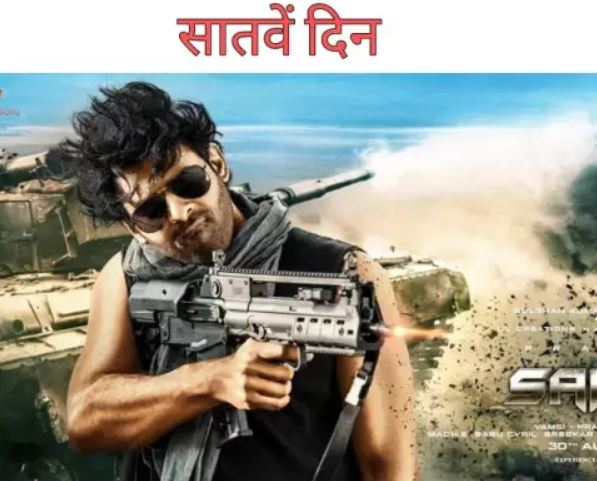 box-office-7th-day-saaho-collection-and-review
