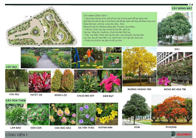 Quy hoạch tiện ích và các loại hoa, cây được trồng trong công viên 1 - The Green Daisy