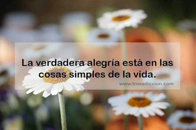 La verdadera alegría está en las cosas simples de la vida