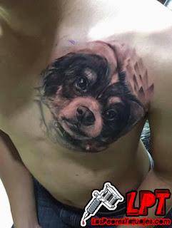 Tapando el tatuaje de la ex con un perro
