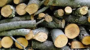 Metode pengeringan kayu merupakan cara-cara yang digunakan untuk mengeringkan suatu kayu. Metode pengeringan kayu digunakan dengan tujuan untuk menghilangkan air di dalam kayu sehingga dapat meningkatkan kekuatan suatu kayu. Menurut Dumanauw (1990), metode pengeringan kayu terdiri dari 2 macam yaitu metode pengeringan alam-udara (alami) dan metode pengeringan buatan (kiln drying). Apabila dibandingkan antara keduanya, metode pengeringan buatan mempercepat laju pengeringan suatu kayu daripada pengeringan secara alami.