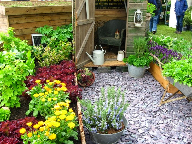 Home Gardening Flowers And Vegetables Ideas