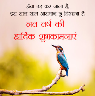 Sweet Message for Happy New Year in Hindi