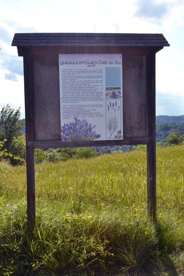 I luoghi a colori del Piemonte
