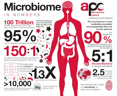Microbiome in numbers infographic