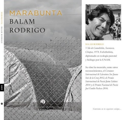 RESEÑA La Marabunta habla: Sobre un libro de Balam Rodrigo | Daniel Medina