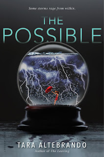 The Possible by Tara Altebrando book cover