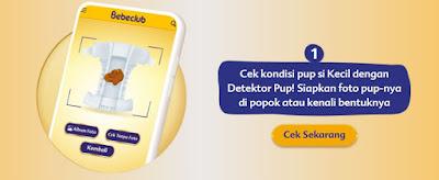 detektor pup dari bebelac