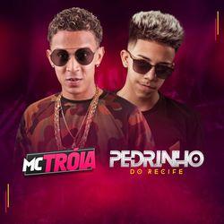 Capa Hit do Brega – Mc Troia e Pedrinho do Recife