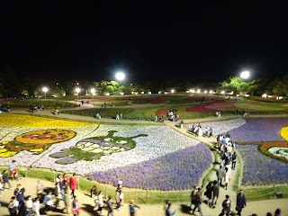 nabana no sato night flowers