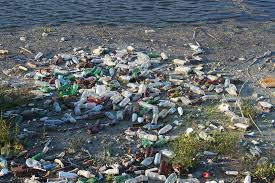 Clean up trash at your local beach, and rivers