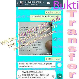 Hub 0852 2926 7029 Kalung Aura Energi Paniai Distributor Agen Toko Cabang Stokis Tiens