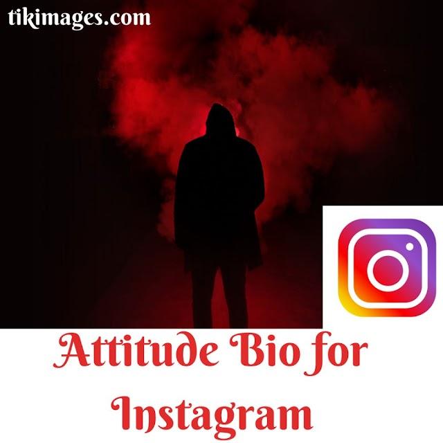 250+ latest Bios For Instagram: (Cool, Attitude, Cute & Funny Insta Bio example)