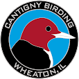 Birds Walks at Cantigny Park