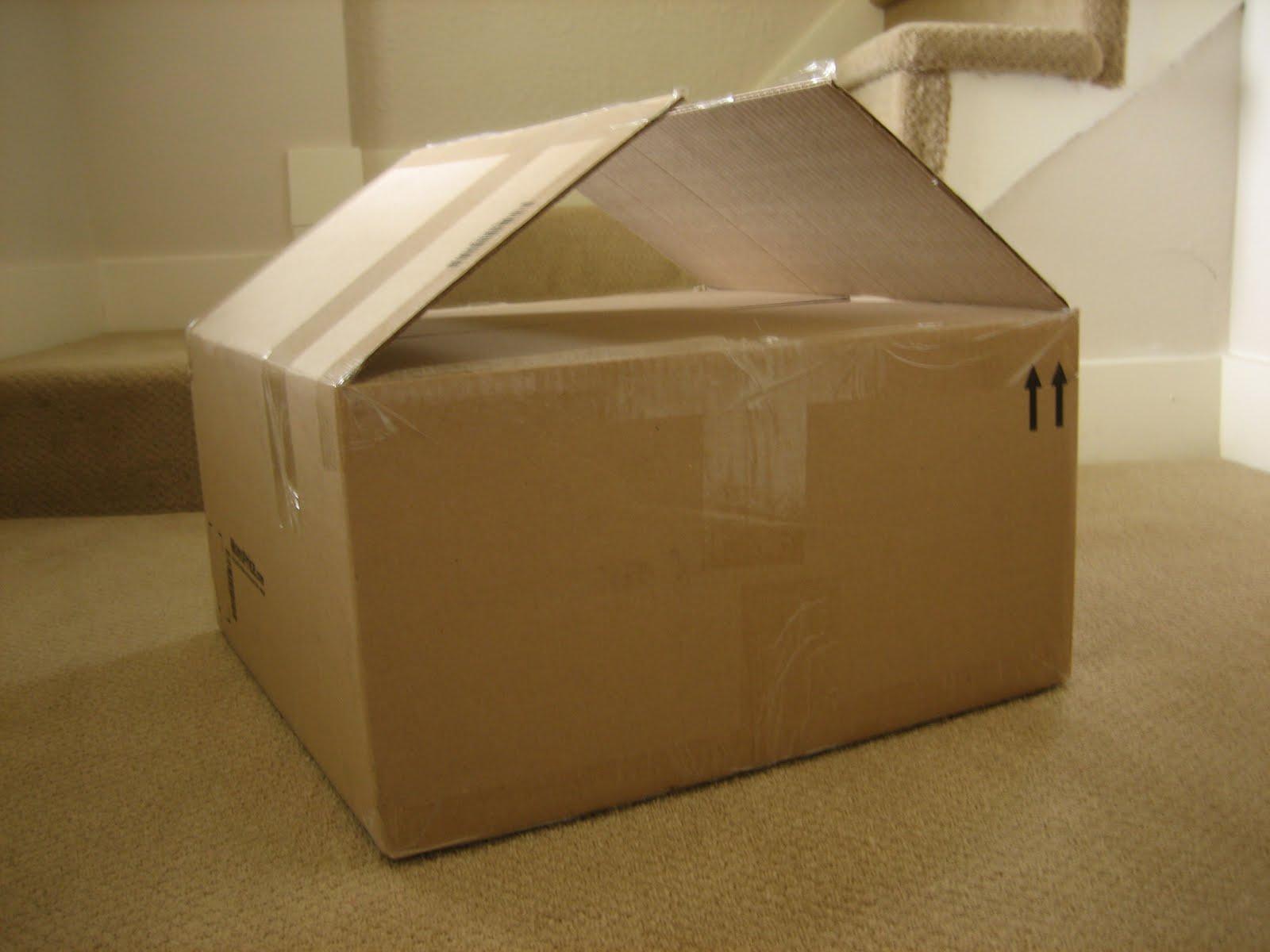 Cardboard Box House Idea