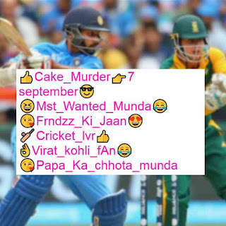 Instagram bio for cricket lovers