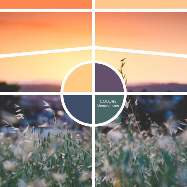 variedad_en_color_moodboard_20