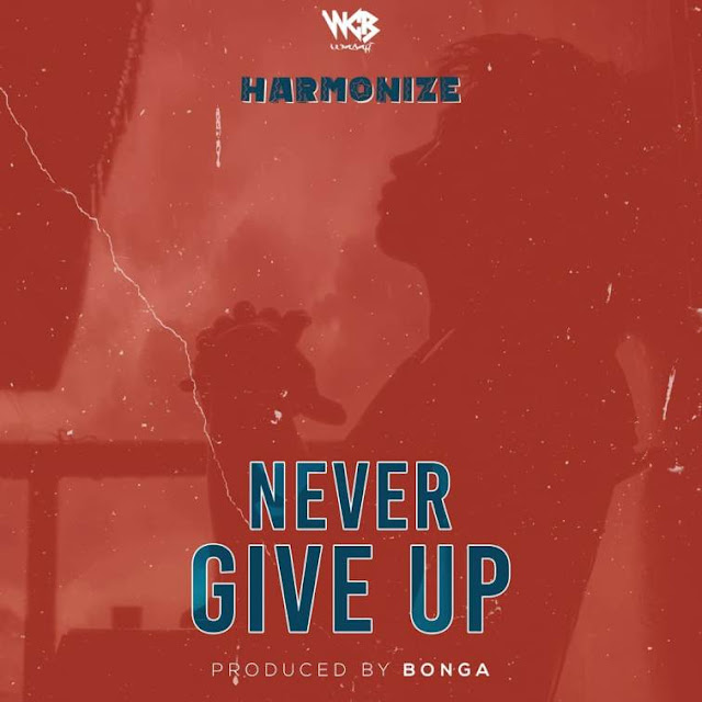 Harmonize - Never Give Up