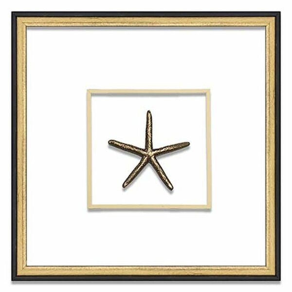 Small Starfish Suspended Between Glass Wall Décor