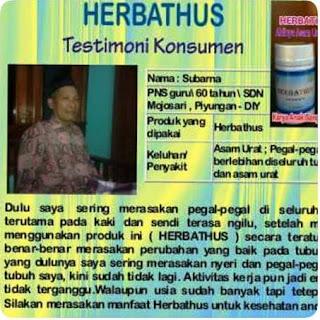 Obat Herbal Asam Urat HERBATHUS Paling Ampuh