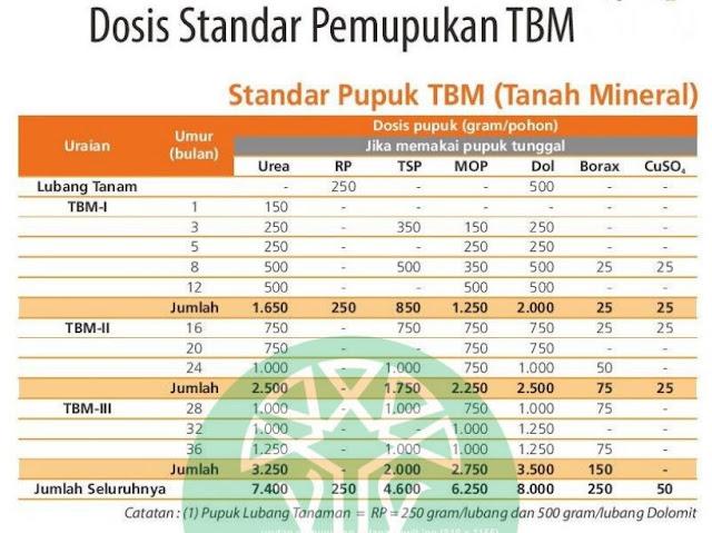 Urutan Pemupukan Kelapa Sawit TBM Tanah Mineral