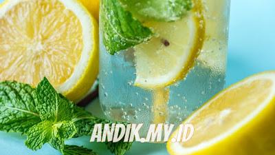 INFUSED WATER, resep infused water, infused water diet, infused water detoks