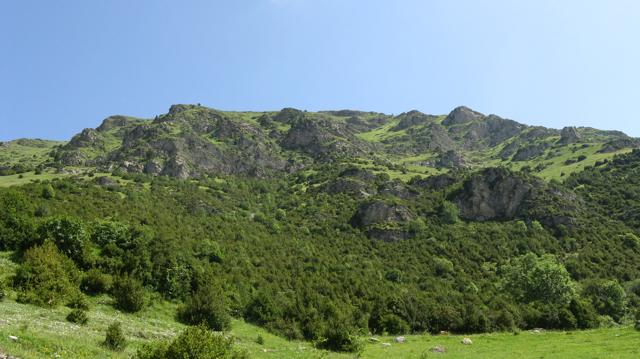 Vessant meridional de la Serra de Cavallera