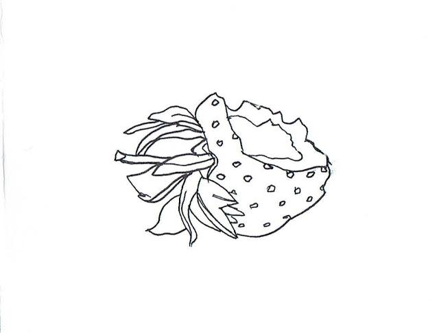 Strawberry, Half-Eaten | Anatomyst Art & Illustration