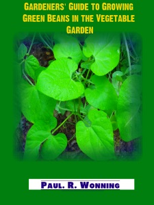 Gardeners Guide to Growing Green Beans