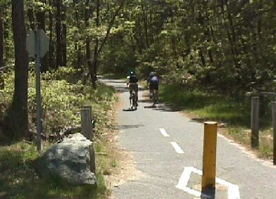 Biking on the Cape Cod Rail Trail in Dennis
