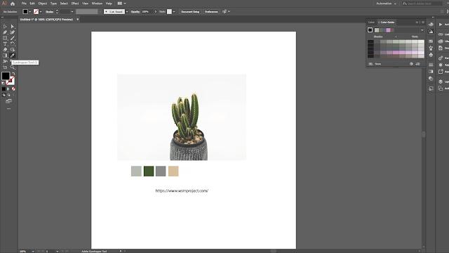 Cara Ambil Sample Warna di Adobe Illustrator