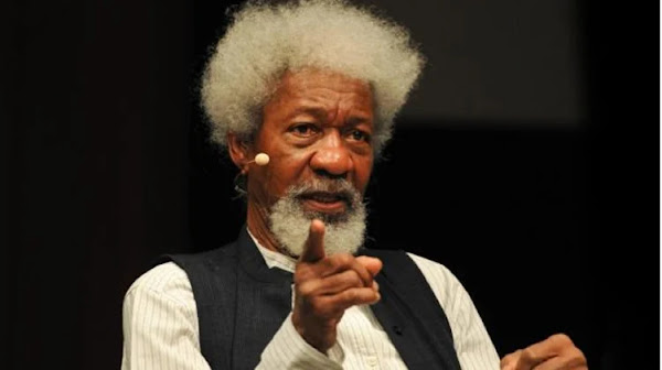 According to Soyinka, Nigeria may not be able to celebrate another Democracy Day.