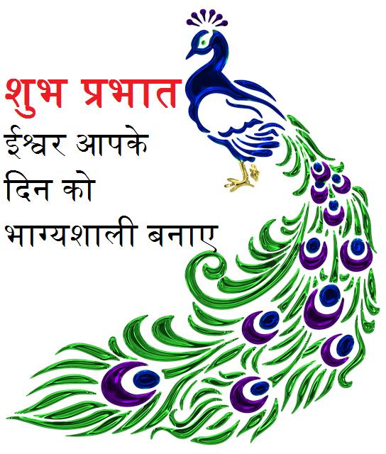 Good Morning Peacock hindi message image