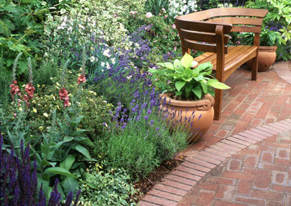 Meow Blog Cats Protection Low Maintenance Gardening For Cat Lovers