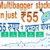 A Super Multibagger stocks in just ₹55
