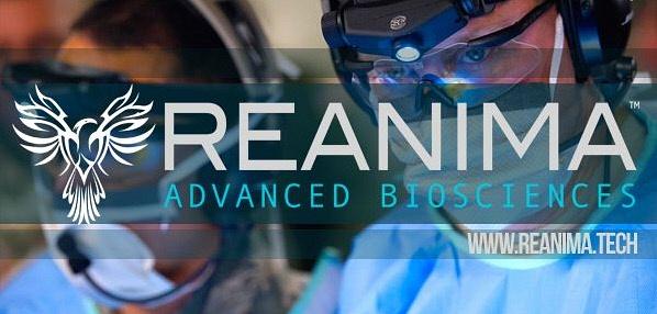 Bioquark-reanima