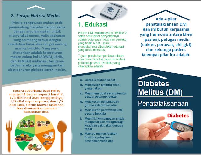 Download Leaflet Brosur Penatalaksanaan Diabetes Melitus (DM)