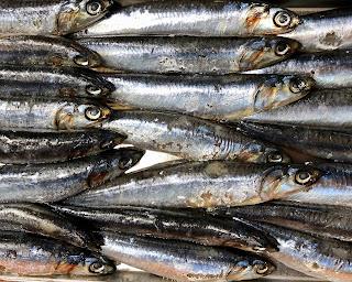 الاسماك الغنية ب اويجا 3