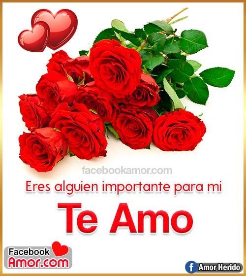ramo de rosas para amor